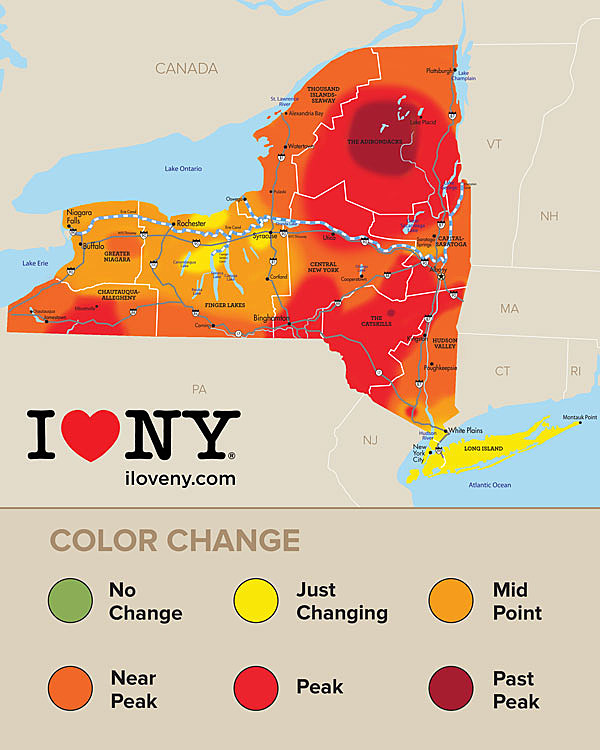 When Leaves Change Color In New York