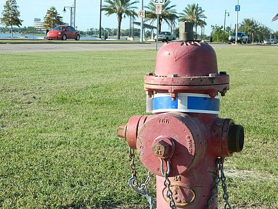 A fire hydrant, duh.